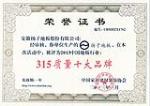 2013中国地板行业315质量十大品牌