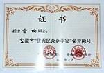 2013安徽优秀企业家证书