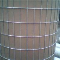 广州镀锌电焊网冷镀锌电焊网热镀锌电焊网