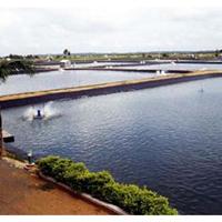 供应HDPE土工膜,土工布防渗膜