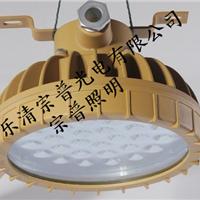 供应BLD110-LED防爆灯