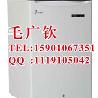 供应实验室低温试验冰箱