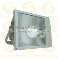 供应方形投光灯-无极灯光源  免维护无极灯