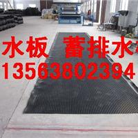 供应楼顶种植塑料排水板*屋顶绿化排水板