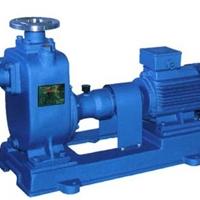 供应100ZW80-20自吸排污泵价格/排污泵选型