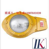 供应LK-FBD2112(BLC8610)防爆道路灯