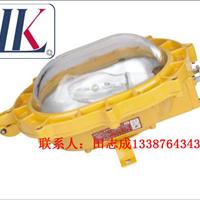 FBD3101(BFC8920)粉尘防爆场内强光泛光灯