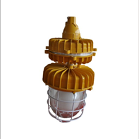 FBD2117(CCd94))免维护防爆无极灯