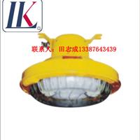 FBD2116(BFC8182)免维护防爆无极灯