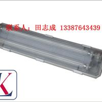 LK-BQY防爆防腐全塑荧光灯