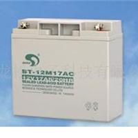 供应赛特BT-12M17AC蓄电池 POS机蓄电池销售