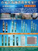 石家庄市扬洪潜水电泵厂
