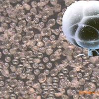 供应膨胀玻化微珠