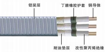 供应潜油泵电缆QYPN|山东潜油泵电缆厂家