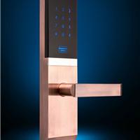 瑞典VOC指纹锁电子家用门锁指纹锁价格