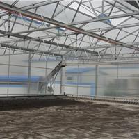 供应济南蔬菜温室大棚阳光板工程