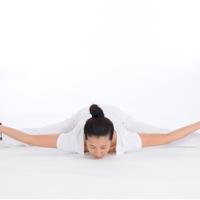 博高防滑舒适瑜伽教室专用PVC地胶