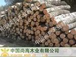 中国尚高木业有限公司