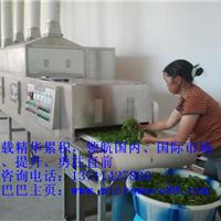 供应国家级的品质――大型绿茶烘干机