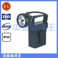 供应IW5100GF便携式强光防爆应急灯