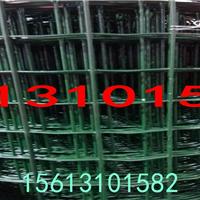 莱州养殖铁丝网2014超低价-山东荷兰网厂家