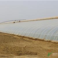 供应智能温室建设温室大棚建设-泽农