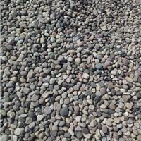供应鹅卵石、变压器渗油池专用鹅卵石厂家