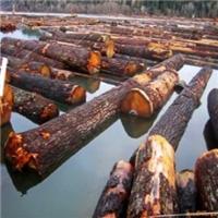 供应无节铁杉木板材 铁杉建筑木方 铁杉加工