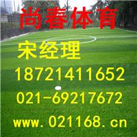 供应嘉兴人造草坪足球场施工