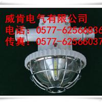 DGS48/127L DGS50/127L(A)矿用LED巷道灯