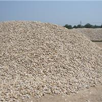 供应广西绿化【天然鹅卵石】园林专用鹅卵石