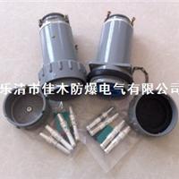 供应30YT/GZ/YZ防爆连接器GTZ-30A