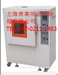 上海实验仪器总厂同款老化箱