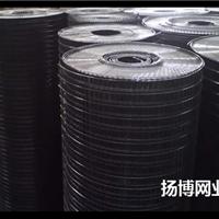 供应建筑用黑丝电焊网/抹墙网/黑丝电焊网厂