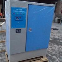 标准混凝土养护箱(混凝土标养箱)