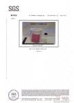SGS检测报告 苯甲3