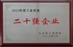 2012年度工业企业发展二十强企业