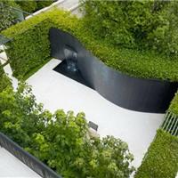 常平草坪供应、草坪绿化工程、草坪绿化设计