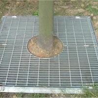 供应树池盖板