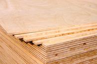 1350杉木极品E1细木工板-大王椰