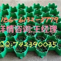 【欢迎光临】烟台植草格有限公司