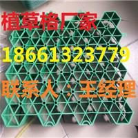 【欢迎光临】北京植草格系列