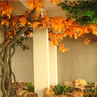 供应厂家直销室外红枫树 玻璃钢仿真树