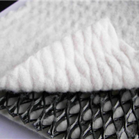 席梦思床垫用网/河北塑料平网价格子最低