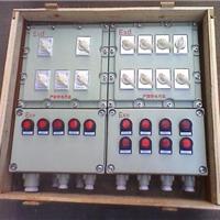 BXX51防爆动力(检修)配电箱