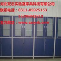 供应河北实验室设备/实验室家具-药品柜