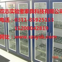 供应河北实验室设备/实验室家具-器皿柜