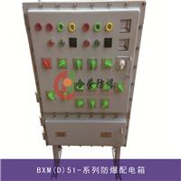 供应非标防爆箱 专业加工防爆配电箱