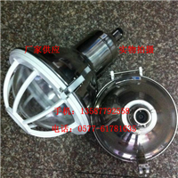 FAD-G-L100x三防灯 吸顶式防水防尘防腐灯