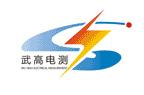 武汉武高电测电气公司